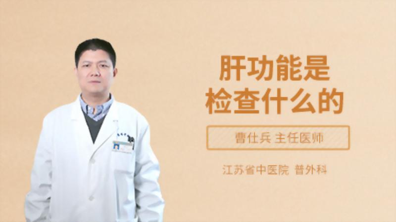 肝功能是检查什么的