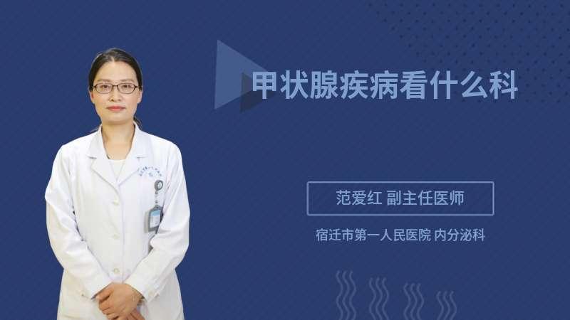 甲状腺疾病看什么科