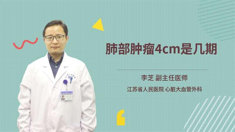 肺部肿瘤4cm是几期