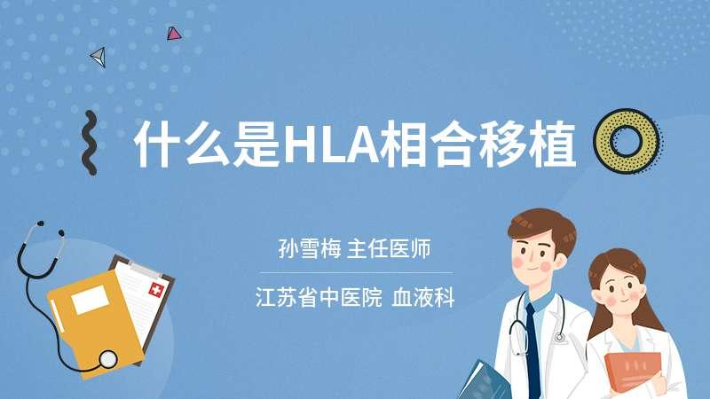 什么是HLA相合移植