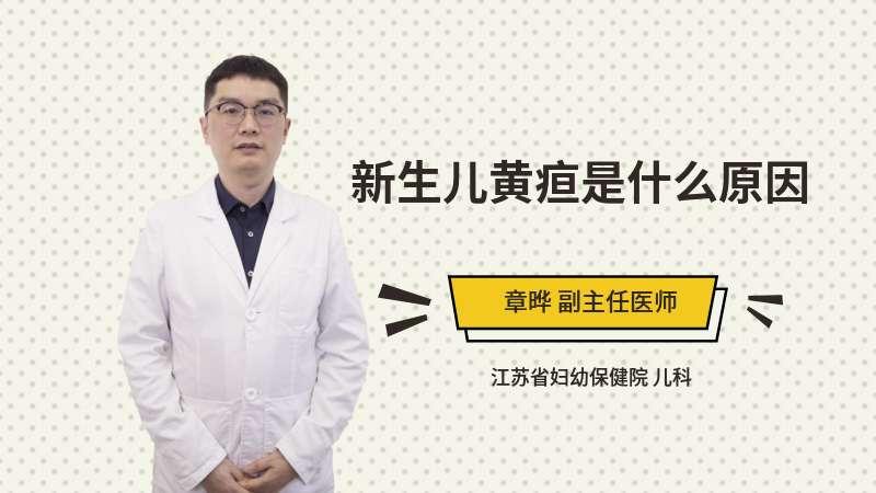 新生儿黄疸是什么原因