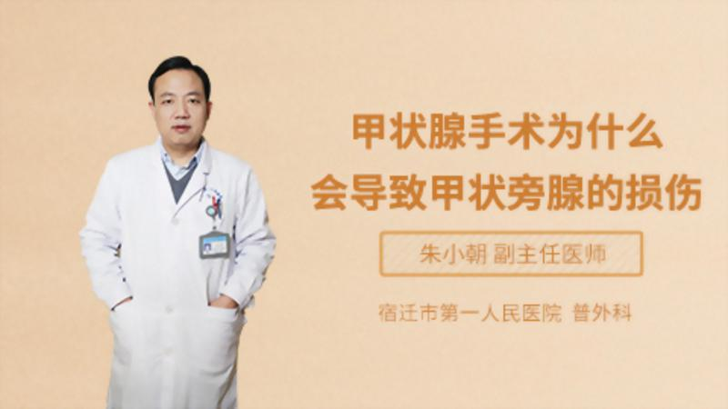 甲状腺手术为什么会导致甲状旁腺的损伤